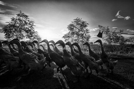 National Geographic Contest 2013